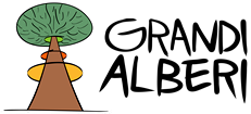 Grandi Alberi, potatura e abbattimento piante. Osimo Ancona Macerata