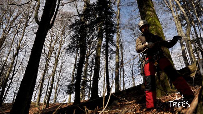 prelievo marze nel bosco di
